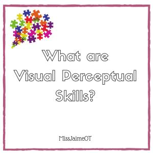 visual perception, visual perceptual skills, vision and learning