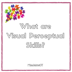 visual perception, visual perceptual skills, vision and learning