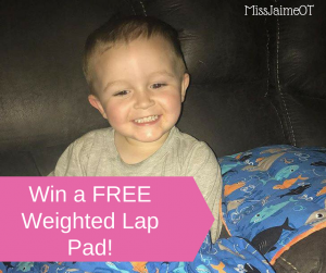 Weighted Lap Pad Giveaway