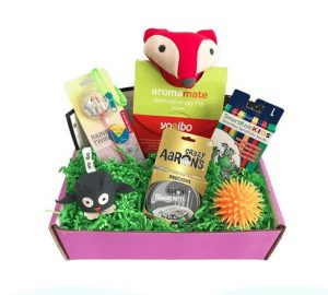 SPD, Sensory Processing Disorder, sensory toys, Sensory Subscription, Sensory Theraplay Box